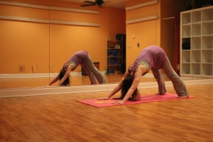 Downward Dog3